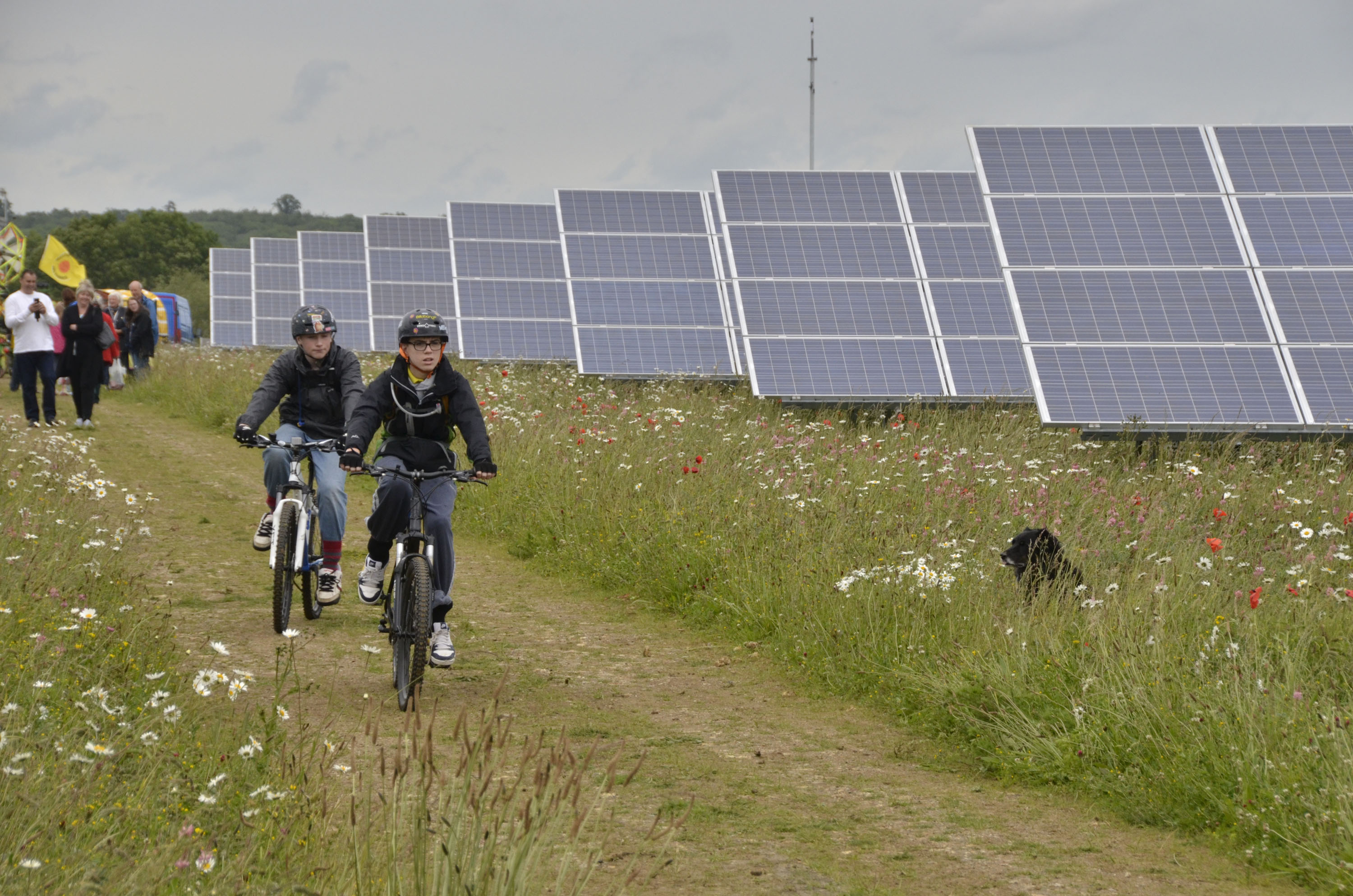 Community-Owned Solar Farm, Westmill Solar Cooperative, UK (Source: Wikipedia)