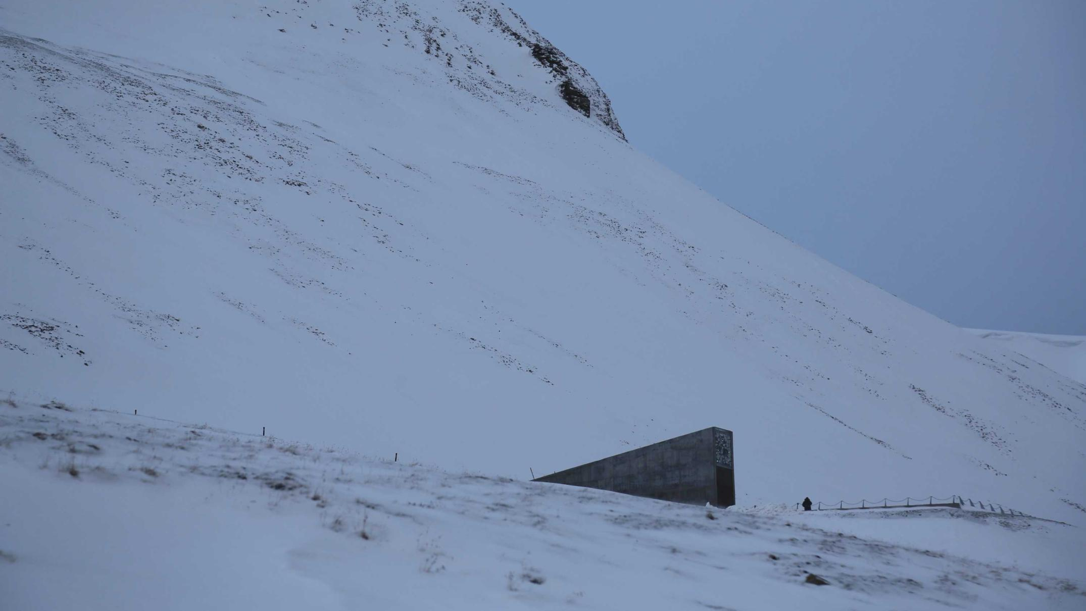 Seed bank in Arctic